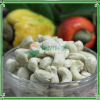 CASHEW NUTS KERNEL WW240
