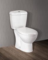 Two piece toilet C301