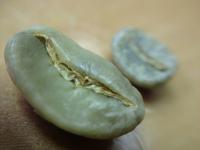 Nicaraguan Green Coffee