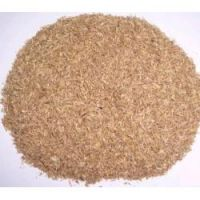 Dried Beer Meal/ Beer Grain